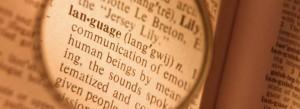 language4