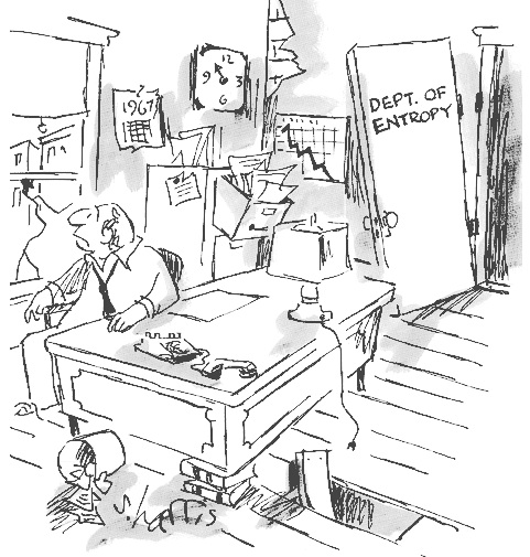 Entropy Cartoon