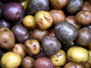 Peruvian Potatoes