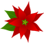 christmas_poinsettia64