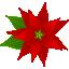 christmas_poinsettia64