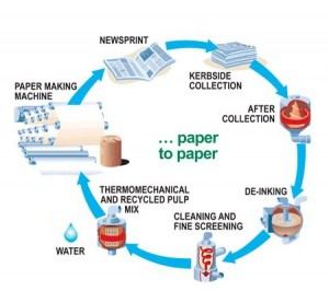 paper_recycling_process