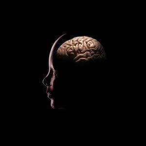storage-capacity-human-brain-300x300