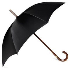 The Umbrella – Who invented it  ?