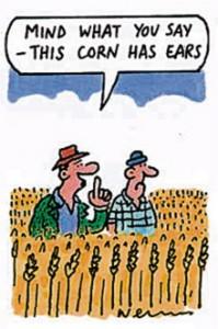 Plants-Cartoon