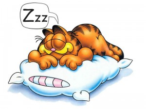 Garfield Sleep Zzzz