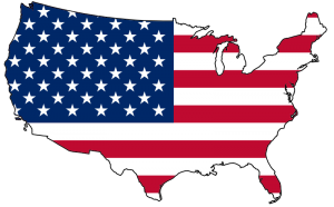 USA Map Flag