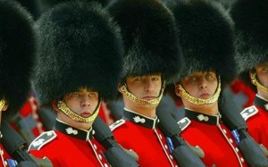 bearskin-hats