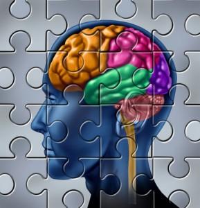 brain-memory-puzzle