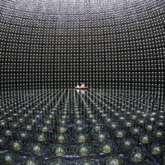 Seeing Neutrinos