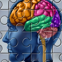 Is there a Place in our Brains where Consciousness exists ?