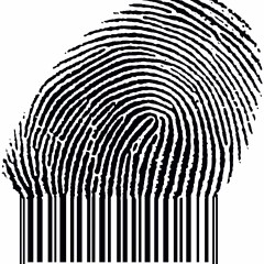 Do Identical Twins have Identical Fingerprints ?