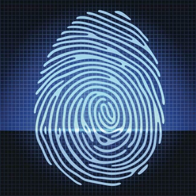 Do Identical Twins have Identical Fingerprints ? - guernseydonkey com