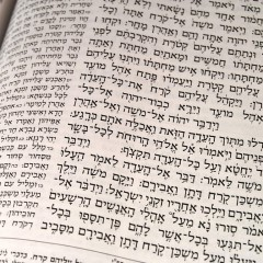 Resurrecting a language – Hebrew's remarkable story