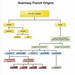 The Origins of Guernsey French and Other Channel Island Languages