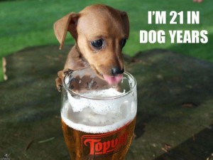 Dog-Years-Joke