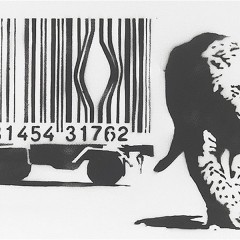 How do Barcodes Work ?
