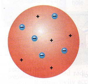 plum pudding_model