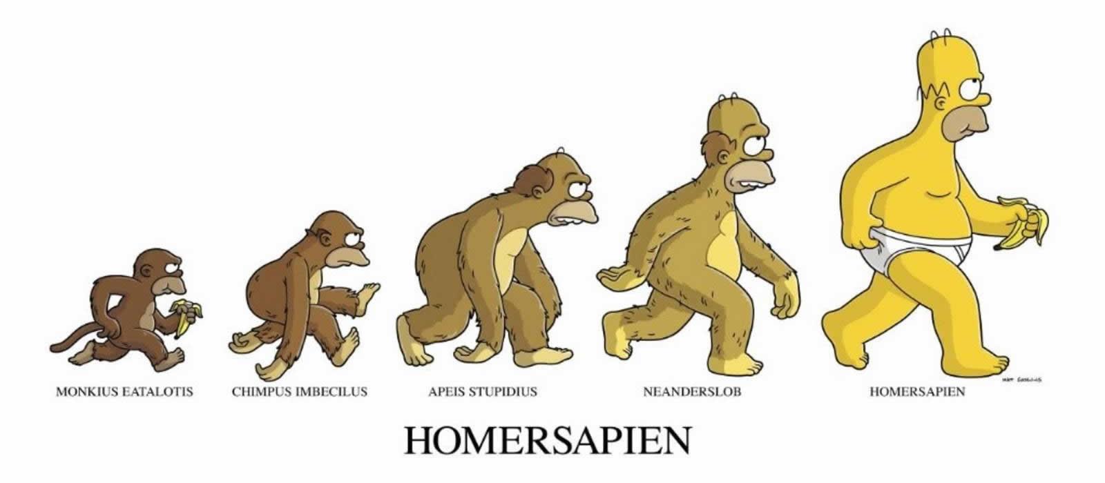 the-simpsons-homersapien