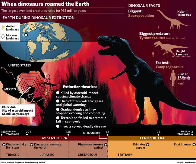 extinction of dinosaurs essay The leading causes of animal extinction biology essay introduction: every organism and species has the right to live in a harmonious and safe world, hence nobody has authority to take away others' lives.