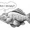 Do Fish Get Thirsty?