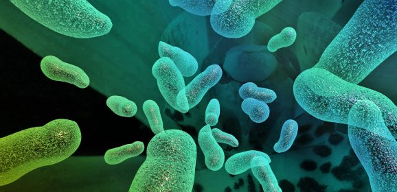Bio Sonar Bacteria and Tackling Antibiotic-Resistant Bugs