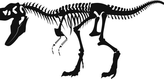 Were the Dinosaurs Cold-Blooded like all today's Reptiles ?