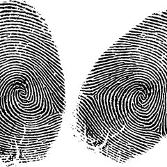 How Do We Know Every Fingerprint is Unique?