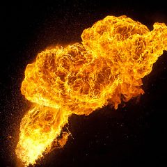 What is the Evidence Supporting Claims of Spontaneous Human Combustion?