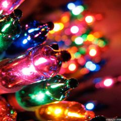 Did you Know – Christmas tree lights were invented just 4 years after they the light bulb was invented ?
