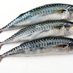 Is eating fish really good for your brain?