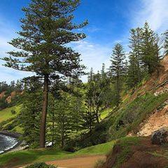 Norfolk Island – A History